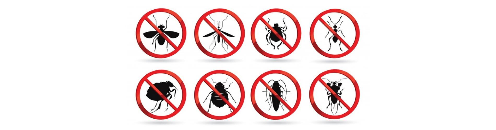pest control service London Ontario